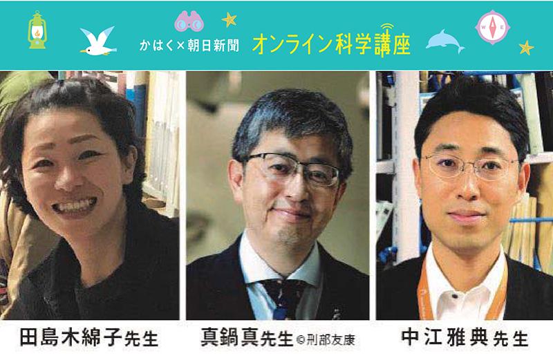 OBIKAKE 【見逃し配信】科博×朝日新聞、小学生向けオンライン科学講座 ニュース