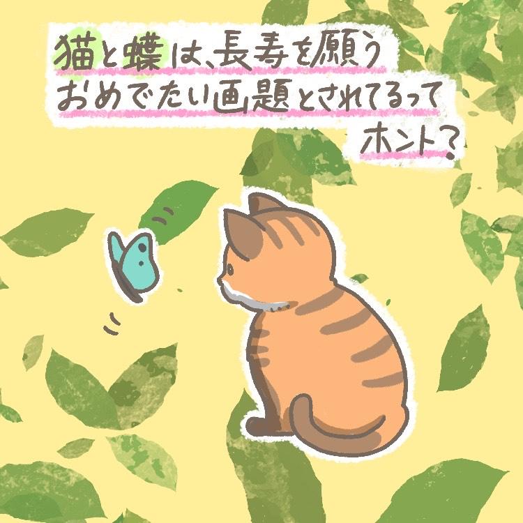 滋賀県 観峰館 猫 蝶 もうてつ OBIKAKE ナニソレ