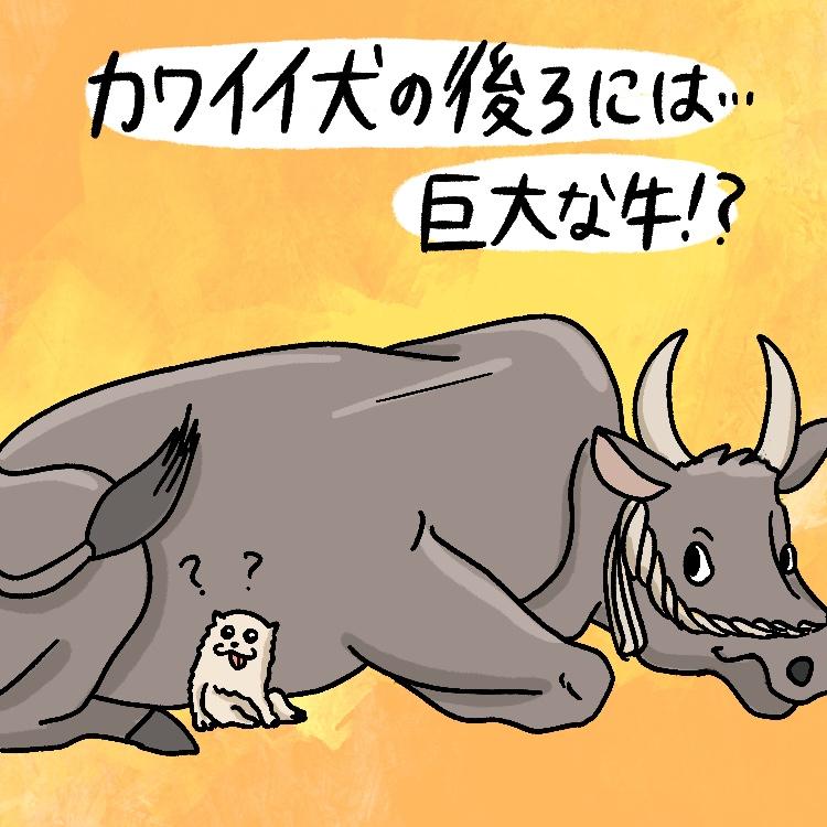 OBIKAKE ナニソレ 長沢芦雪 白像黒牛図屛風