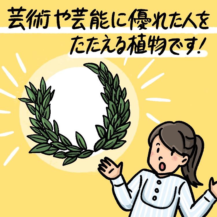 OBIKAKE ナニソレ 月桂樹 IONA