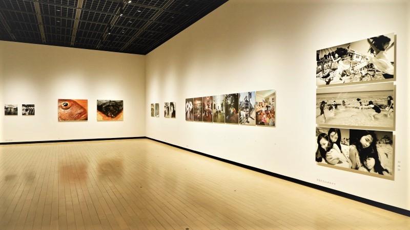 東京都写真美術館「新・晴れた日 篠山紀信」展覧会レポート