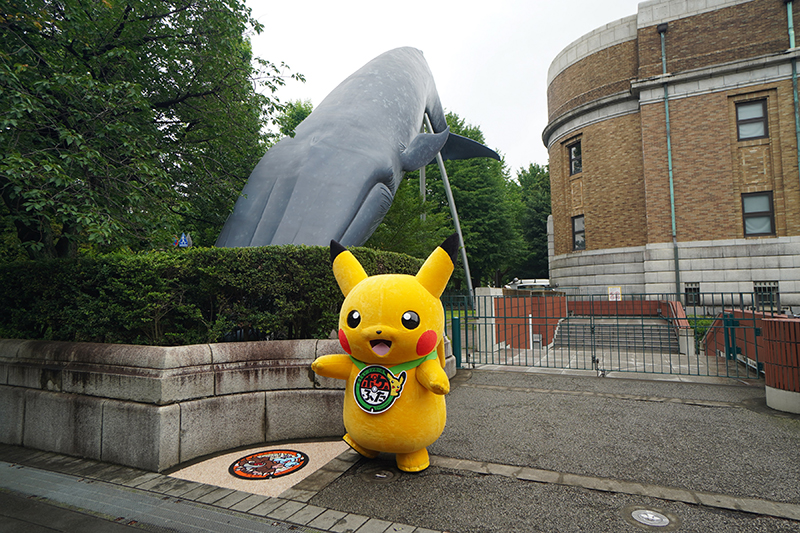 OBIKAKE ニュース ポケモンマンホール ポケふた