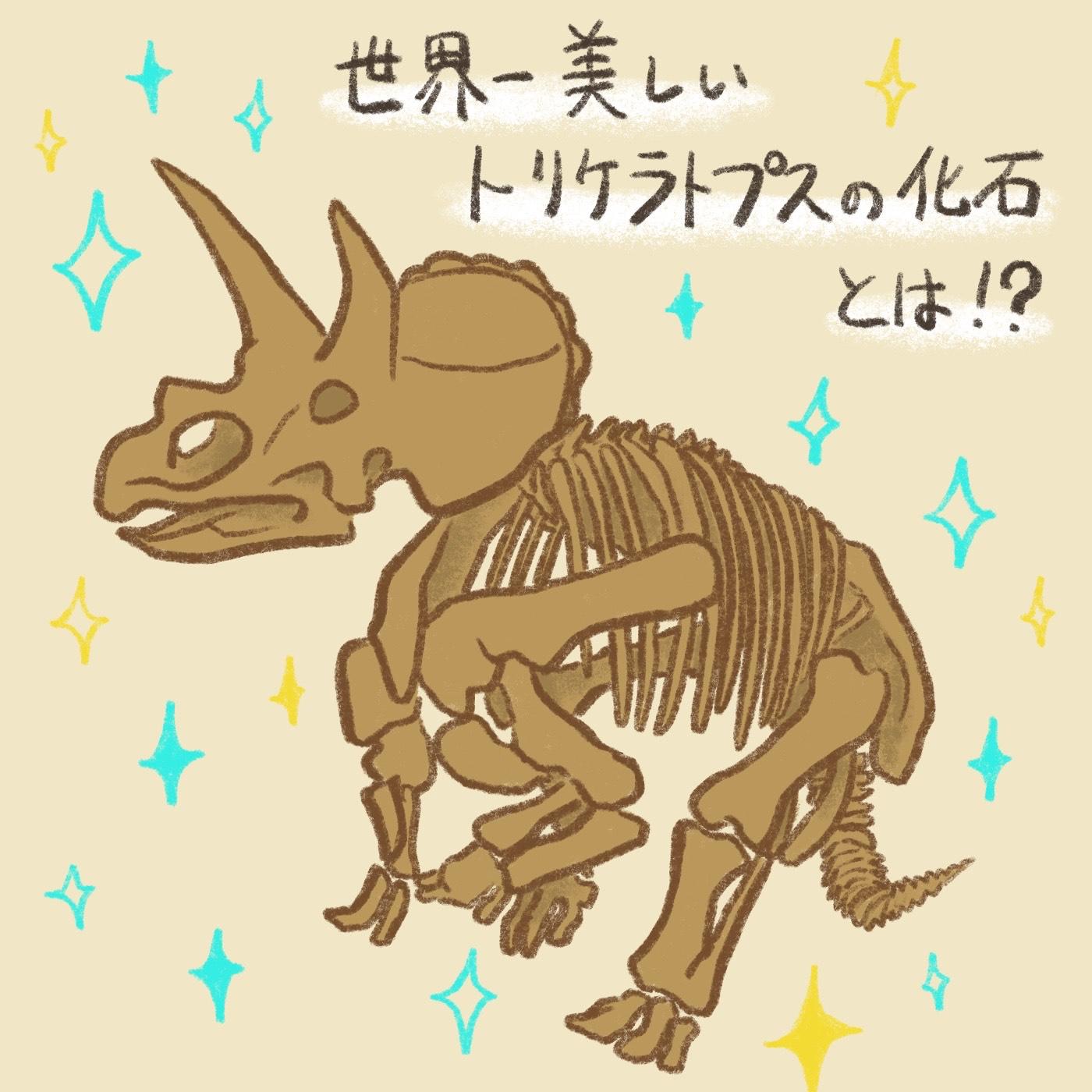 OBIKAKE ナニソレ トリケラトプスの化石 レイン つちやさや