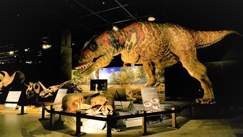 東京ドームシティGallery AaMo「恐竜展2021」展覧会レポート/チケットプレゼント